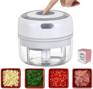Best Small Electric Food Choppers 2020